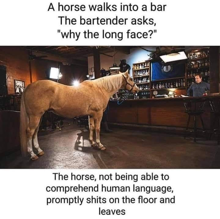 """Horse - A horse walks into a bar The bartender asks, """"why the long face?"""" The horse, not being able to comprehend human language, promptly shits on the floor and leaves"""