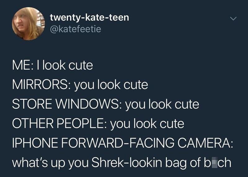 Organism - twenty-kate-teen @katefeetie ME:I look cute MIRRORS: you look cute STORE WINDOWS: you look cute OTHER PEOPLE: you look cute IPHONE FORWARD-FACING CAMERA: what's up you Shrek-lookin bag of bich