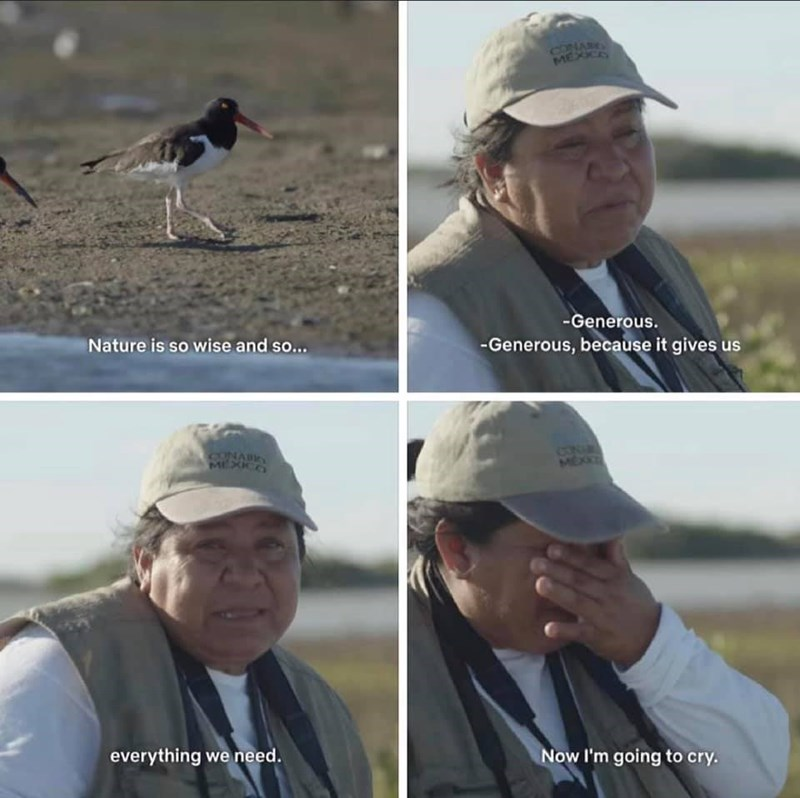 Bird - MEXE -Generous. Nature is so wise and so... -Generous, because it gives us CON MEX MEXICO everything we need. Now I'm going to cry.