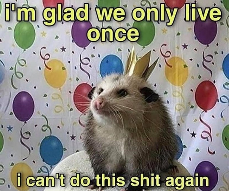 Rodent - m glad we only live ônce i can't do this shit again
