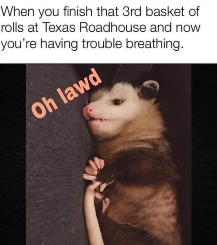 Eyelash - When you finish that 3rd basket of rolls at Texas Roadhouse and now you're having trouble breathing. Oh lawd