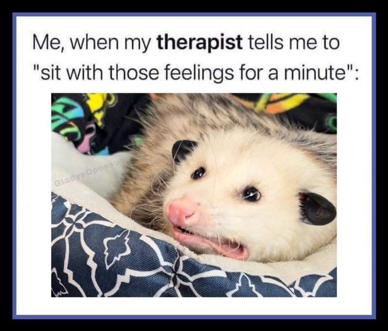 """Vertebrate - Me, when my therapist tells me to """"sit with those feelings for a minute"""": GladysOpossu"""