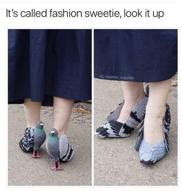 Clothing - It's called fashion sweetie, look it up IG: memes supplier