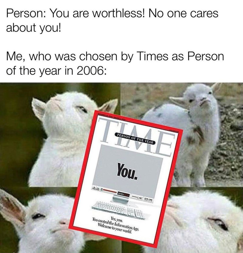 Vertebrate - Person: You are worthless! No one cares about you! Me, who was chosen by Times as Person of the year in 2006: PERSON OF THE YEAR You. Yes, you. You control the Information Age. Wekcome to your workd.