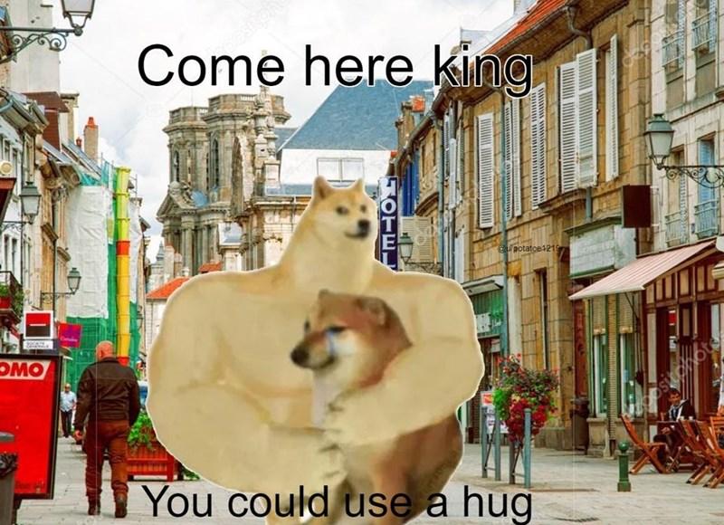 Photograph - Come here king pesitph @potatoe 1219 OMO You could use a hug Full JOTE