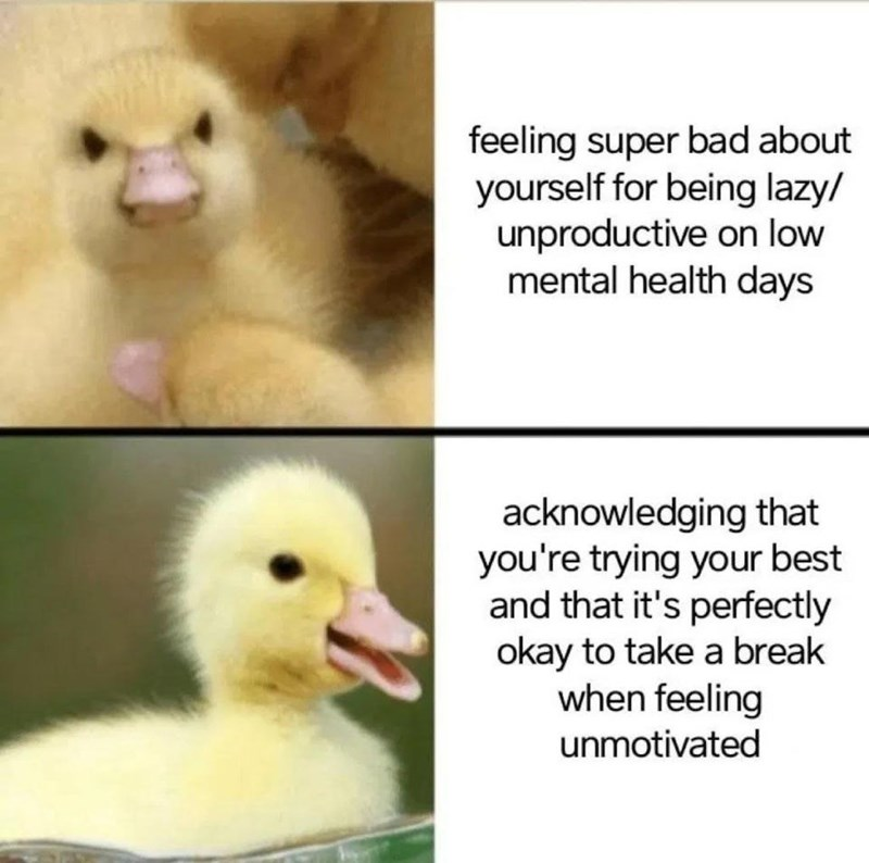 Photograph - feeling super bad about yourself for being lazy/ unproductive on low mental health days acknowledging that you're trying your best and that it's perfectly okay to take a break when feeling unmotivated