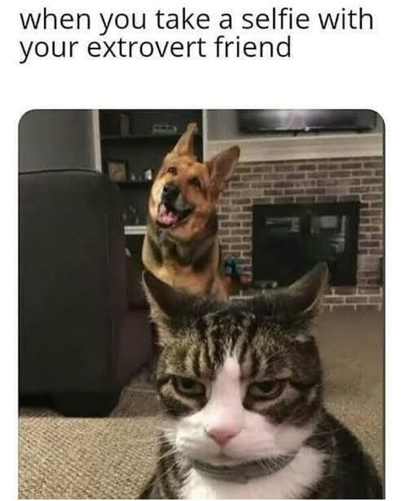 Photograph - when you take a selfie with your extrovert friend