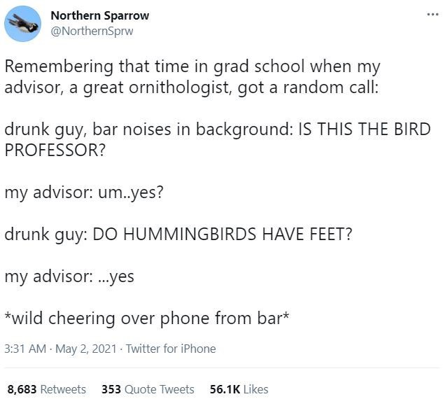 Font - Northern Sparrow @NorthernSprw ... Remembering that time in grad school when my advisor, a great ornithologist, got a random call: drunk guy, bar noises in background: IS THIS THE BIRD PROFESSOR? my advisor: um.yes? drunk guy: DO HUMMINGBIRDS HAVE FEET? my advisor: .yes *wild cheering over phone from bar* 3:31 AM - May 2, 2021 - Twitter for iPhone 8,683 Retweets 353 Quote Tweets 56.1K Likes