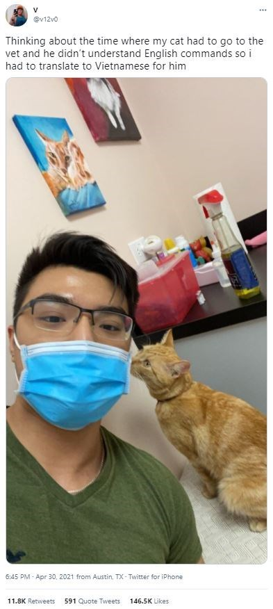Glasses - V @v12v0 Thinking about the time where my cat had to go to the vet and he didn't understand English commands so i had to translate to Vietnamese for him 6:45 PM - Apr 30, 2021 from Austin, TX- Twitter for iPhone 11.8K Retweets 591 Quote Tweets 146.5K Likes