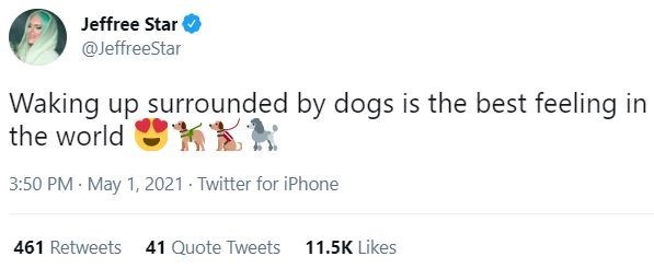 Font - Jeffree Star @JeffreeStar Waking up surrounded by dogs is the best feeling in the world 3:50 PM · May 1, 2021 - Twitter for iPhone 461 Retweets 41 Quote Tweets 11.5K Likes