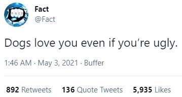 Font - Fact @Fact Dogs love you even if you're ugly. 1:46 AM - May 3, 2021 - Buffer 892 Retweets 136 Quote Tweets 5,935 Likes