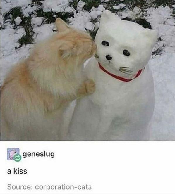 Snow - geneslug a kiss Source: corporation-cat3