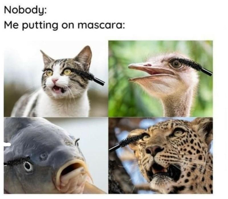 Photograph - Nobody: Me putting on mascara: