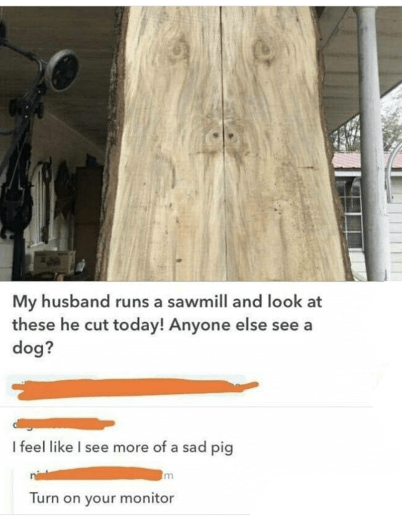 Wood - My husband runs a sawmill and look at these he cut today! Anyone else see a dog? I feel like I see more of a sad pig m Turn on your monitor