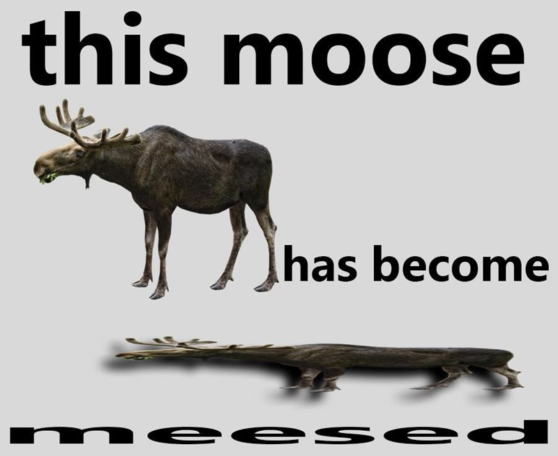 Organism - this moose has become m ee se d SE