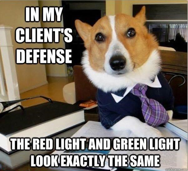 Dog - IN MY CLIENT'S DEFENSE THE RED LIGHT AND GREEN LIGHT LOOK EXACTLY THE SAME quickmeme com