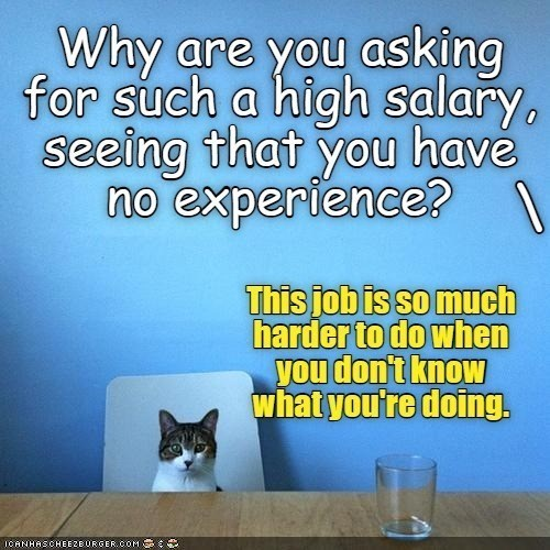 Cat - Why are you asking for such a high salary, seeing that you havé no experience? This job is so much harder to do when you don't know what you're doing. ICANHASCHEEZBURGER.COM