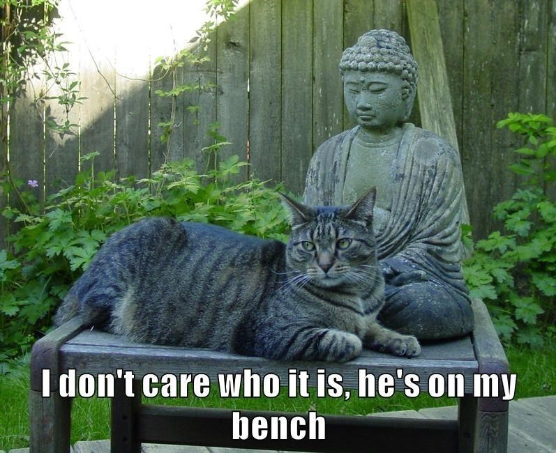 Plant - I don't care who it is, he's on my bench