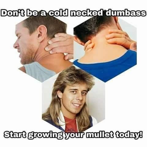Forehead - Don't be a cold necked dumbass Start growing your mullet today!