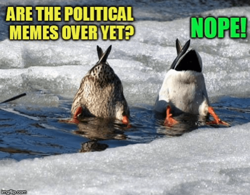 Water - ARE THE POLITICAL MEMES OVER YET? NOPE! imgfip.com