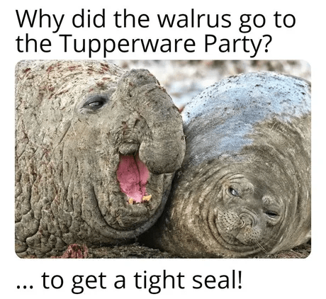 Organism - Why did the walrus go to the Tupperware Party? ... to get a tight seal!