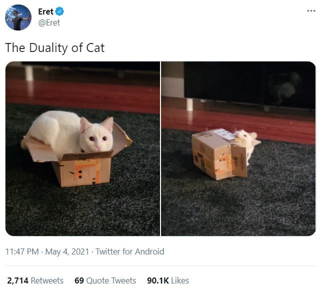 Vertebrate - Eret ... @Eret The Duality of Cat 11:47 PM · May 4, 2021 - Twitter for Android 2,714 Retweets 69 Quote Tweets 90.1K Likes