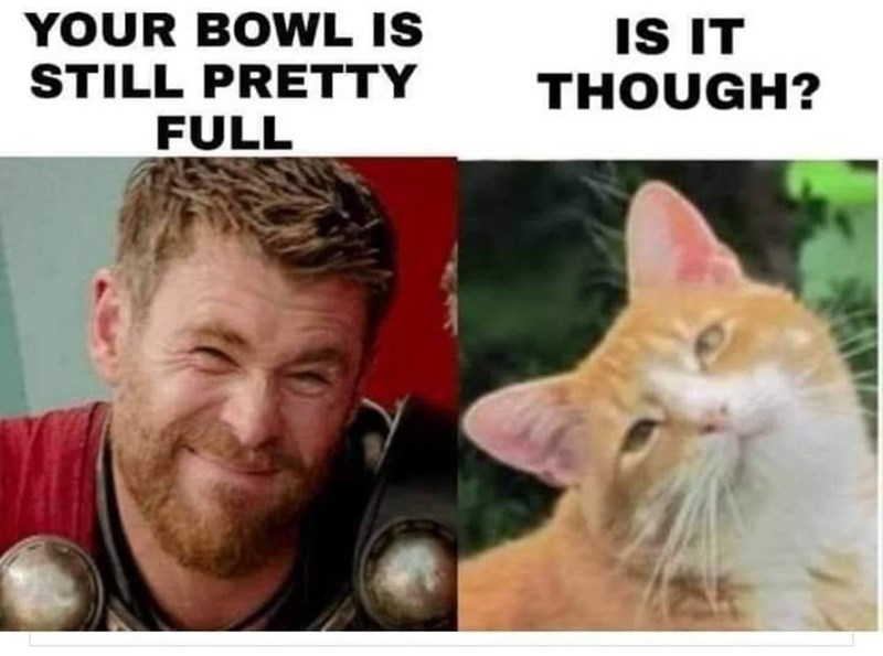 Nose - YOUR BOWL IS STILL PRETTY IS IT THOUGH? FULL