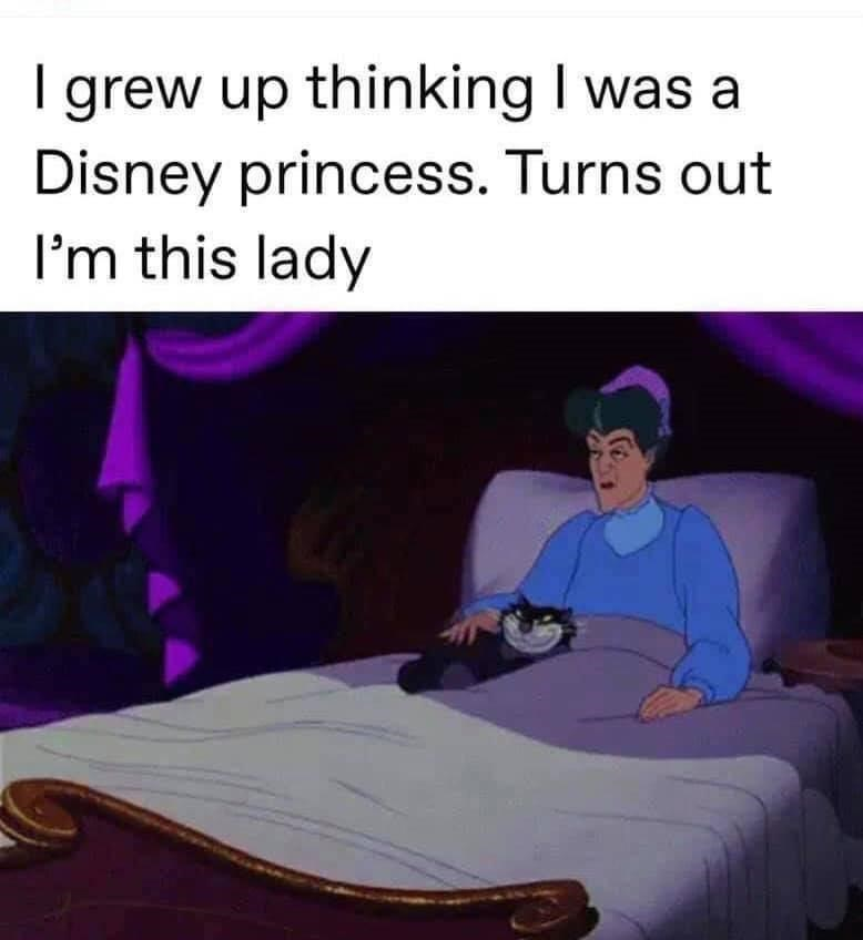 Product - I grew up thinking I was a Disney princess. Turns out I'm this lady