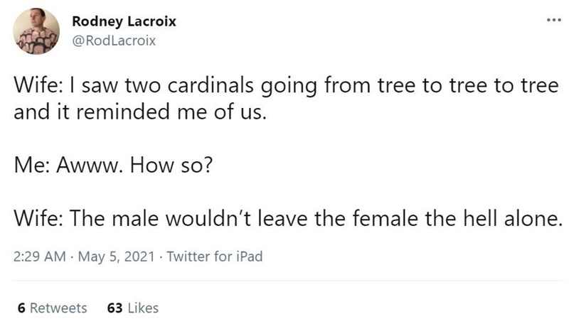 Gesture - Rodney Lacroix @RodLacroix ... Wife: I saw two cardinals going from tree to tree to tree and it reminded me of us. Me: Awww. How so? Wife: The male wouldn't leave the female the hell alone. 2:29 AM May 5, 2021 · Twitter for iPad 6 Retweets 63 Likes