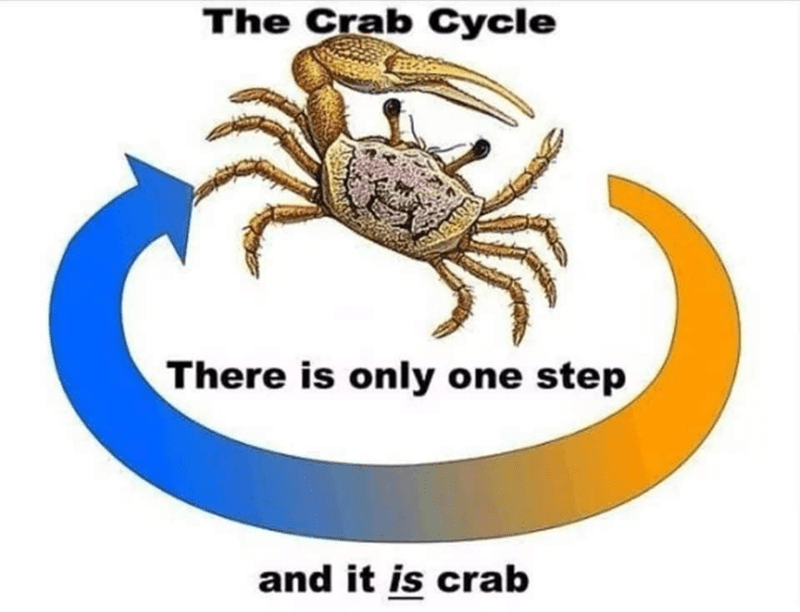 Arthropod - The Crab Cycle There is only one step and it is crab