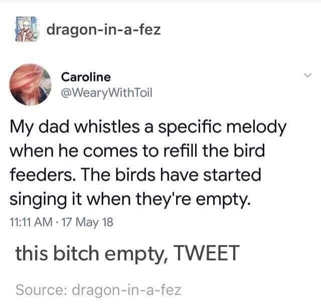 Font - dragon-in-a-fez Caroline @WearyWithToil My dad whistles a specific melody when he comes to refill the bird feeders. The birds have started singing it when they're empty. 11:11 AM 17 May 18 this bitch empty, TWEET Source: dragon-in-a-fez