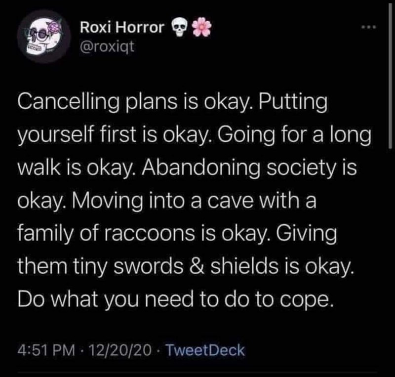 Font - Roxi Horror @roxiqt Cancelling plans is okay. Putting yourself first is okay. Going for a long walk is okay. Abandoning society is okay. Moving into a cave with a family of raccoons is okay. Giving them tiny swords & shields is okay. Do what you need to do to cope. 4:51 PM · 12/20/20 · TweetDeck