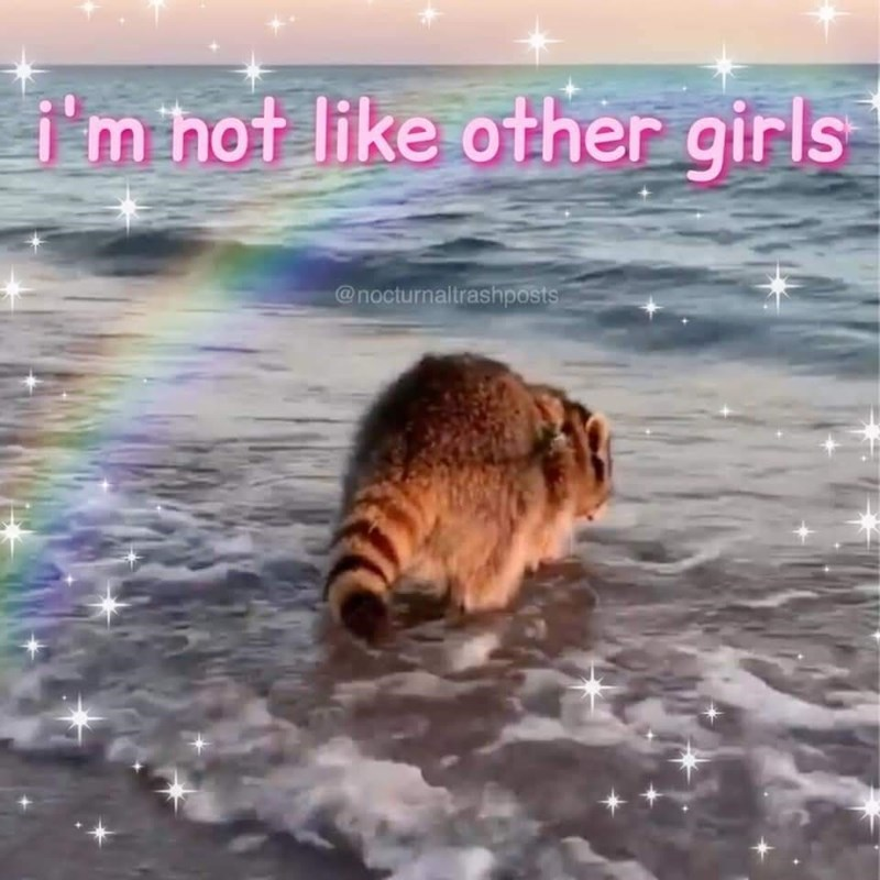 Rainbow - i'm hot like other girls @nocturnaltrashposts
