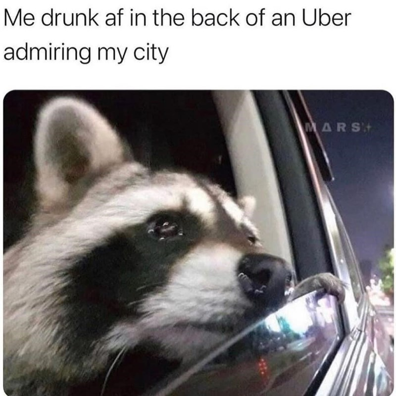 Photograph - Me drunk af in the back of an Uber admiring my city MARS