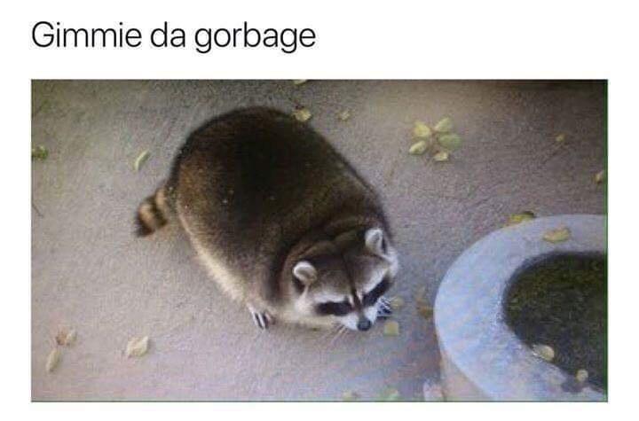 Carnivore - Gimmie da gorbage