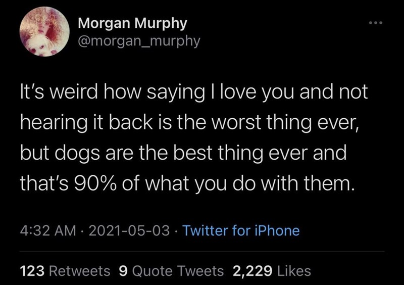 Font - Morgan Murphy @morgan_murphy It's weird how saying I love you and not hearing it back is the worst thing ever, but dogs are the best thing ever and that's 90% of what you do with them. 4:32 AM · 2021-05-03 · Twitter for iPhone 123 Retweets 9 Quote Tweets 2,229 Likes