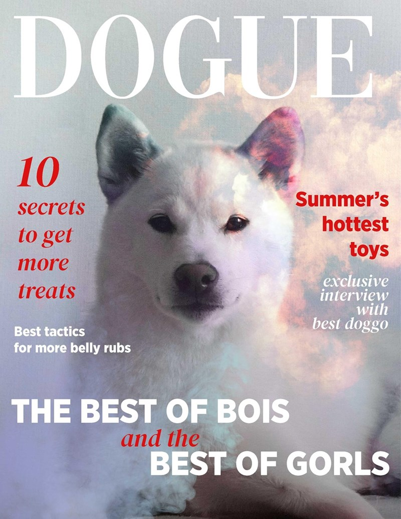 Dog - DOĞUE 10 Summer's secrets hottest to get toys тore exclusive interview with best doggo treats Best tactics for more belly rubs THE BEST OF BOIS and the BEST OF GORLS