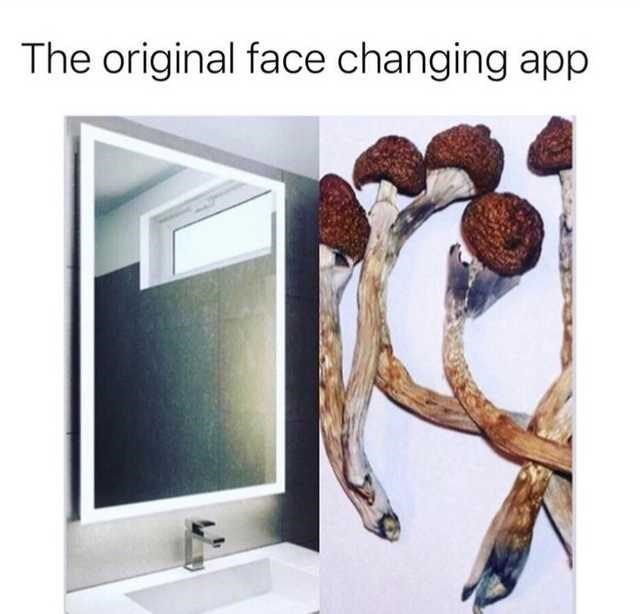 Product - The original face changing app