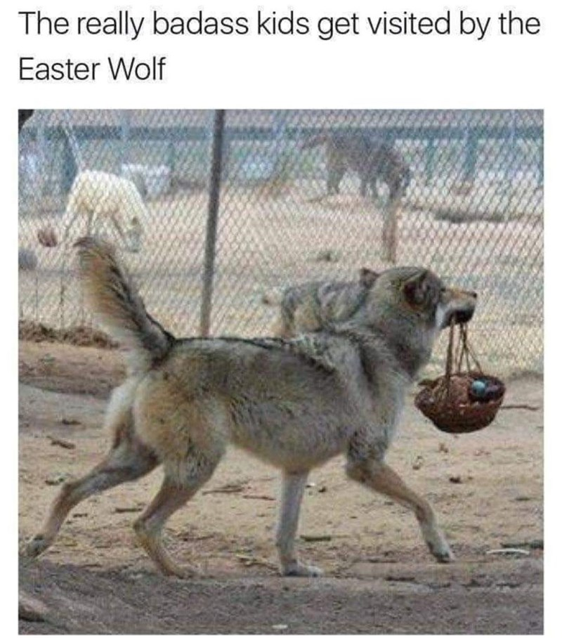 Fence - The really badass kids get visited by the Easter Wolf