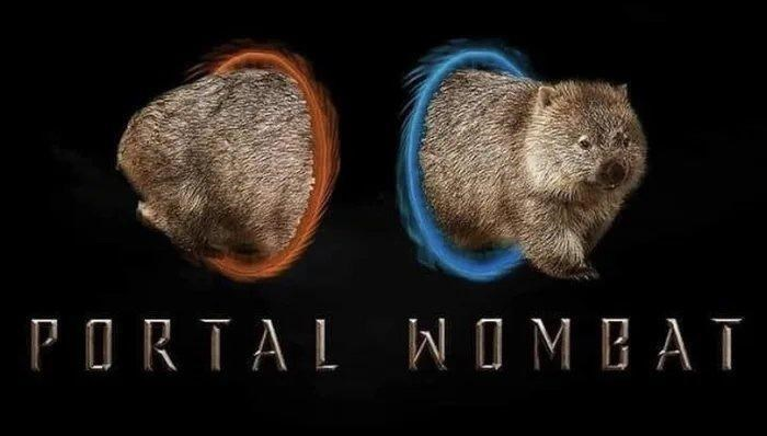 Organism - PORTAL WOMBAT