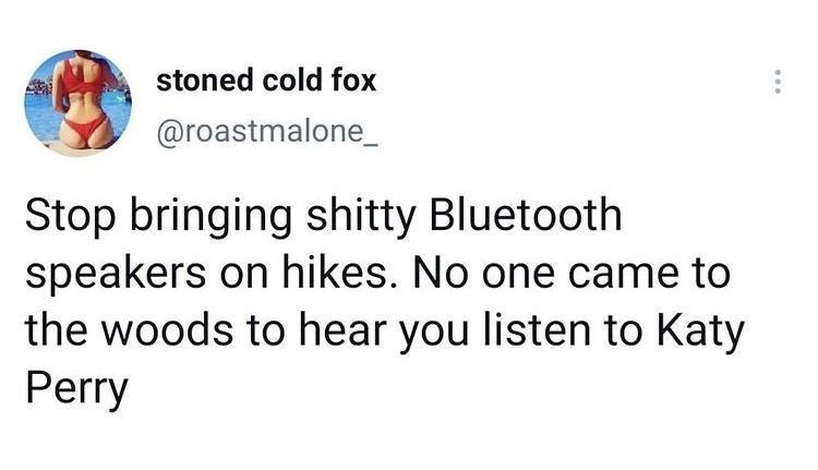 Font - stoned cold fox @roastmalone_ Stop bringing shitty Bluetooth speakers on hikes. No one came to the woods to hear you listen to Katy Perry