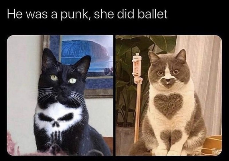 Cat - He was a punk, she did ballet