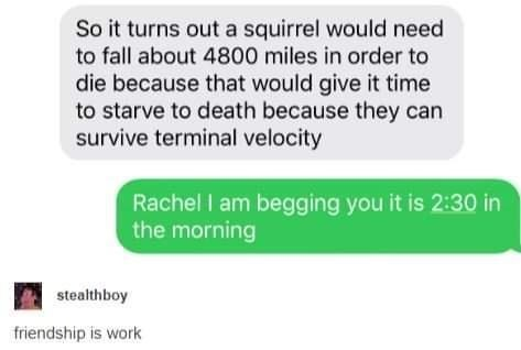 Product - So it turns out a squirrel would need to fall about 4800 miles in order to die because that would give it time to starve to death because they can survive terminal velocity Rachel I am begging you it is 2:30 in the morning stealthboy friendship is work