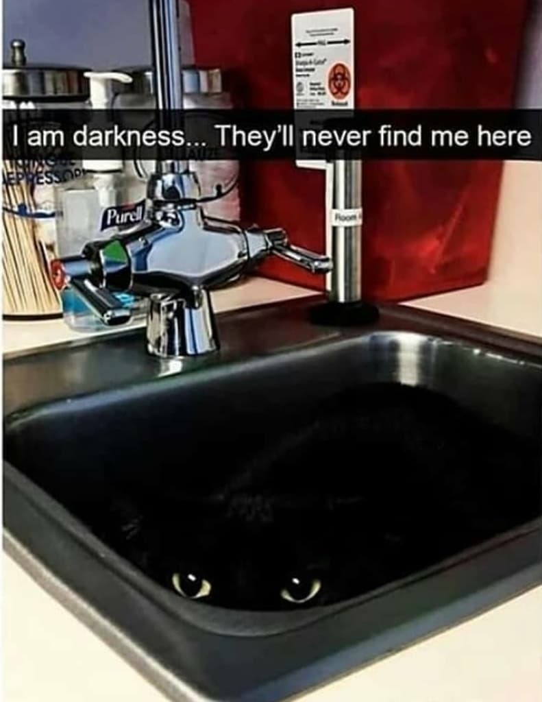 Kitchen sink - I am darkness... They'll never find me here Purcl Foom
