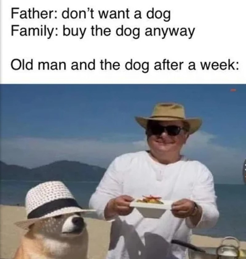 Hat - Father: don't want a dog Family: buy the dog anyway Old man and the dog after a week: