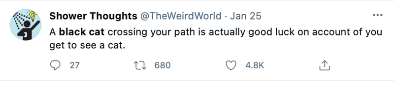 Product - Shower Thoughts @TheWeirdWorld · Jan 25 ... A black cat crossing your path is actually good luck on account of you get to see a cat. Q 27 27 680 4.8K