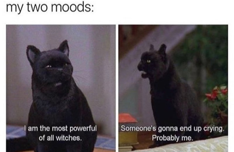 Cat - my two moods: I am the most powerful Someone's gonna end up crying. Probably me. of all witches.