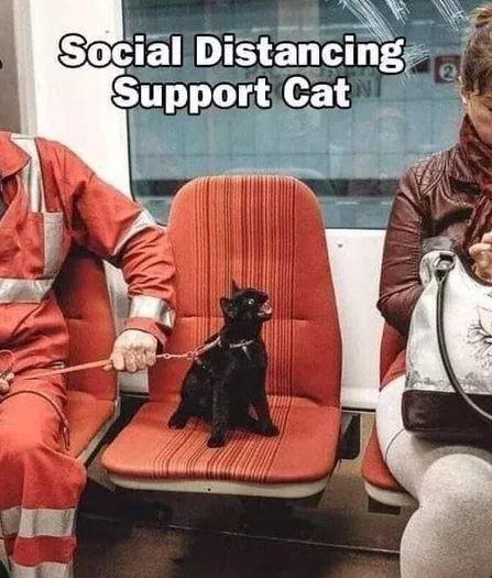 Outerwear - Social Distancing Şupport Cat 2.