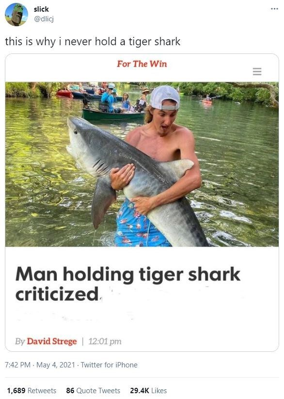 Water - slick ... @dlicj this is why i never hold a tiger shark For The Win Man holding tiger shark criticized. By David Strege | 12:01 pm 7:42 PM May 4, 2021 Twitter for iPhone 1,689 Retweets 86 Quote Tweets 29.4K Likes II