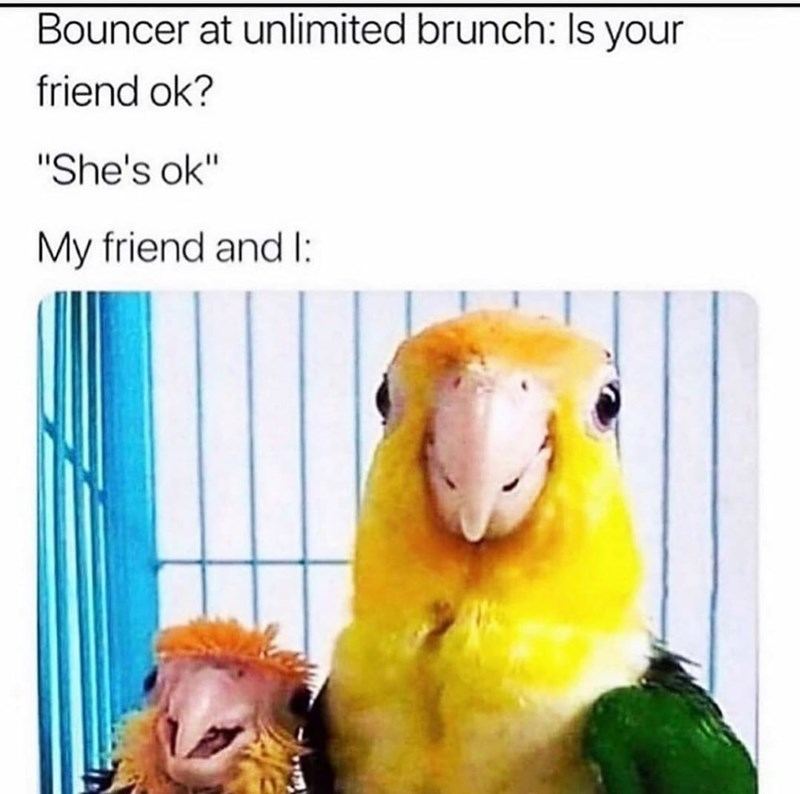 """Product - Bouncer at unlimited brunch: Is your friend ok? """"She's ok"""" My friend and I:"""